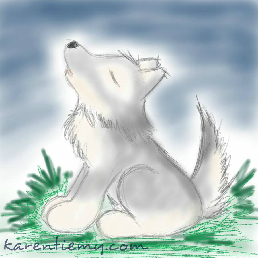 wolf karen tiemy cute animal drawing kawaii illustration cartoon digital sketches 2